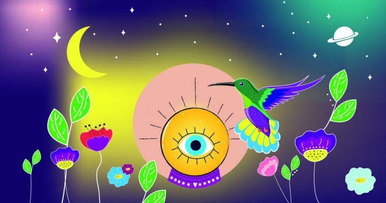 Le petit colibri s'envole avec 79%