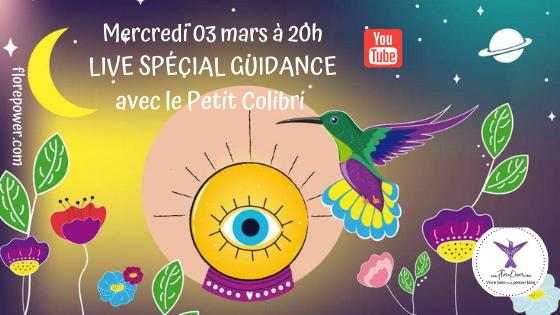 Live Spécial Guidance avec l'Oracle du Petit Colibri